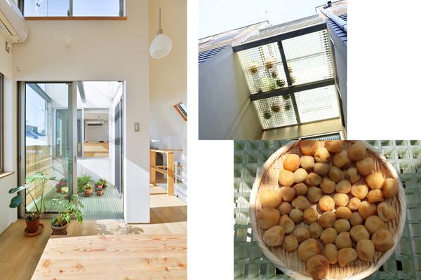 テラスの床を光と風がよく通る素材にしているので、梅干しや切干大根作りなどを楽しんでいます。